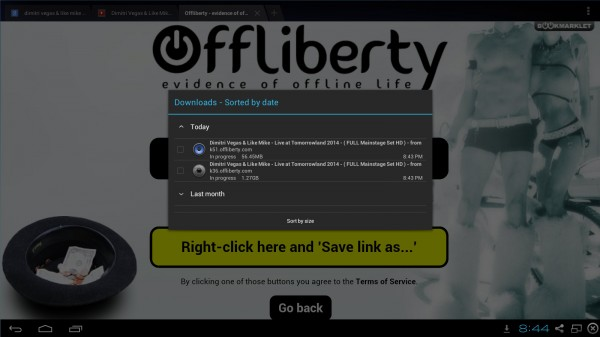 Why switch to Offliberty.com and the likes