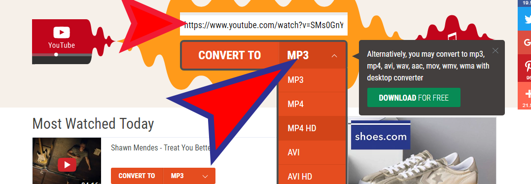 flvto biz review tutorial step 2 select convert option