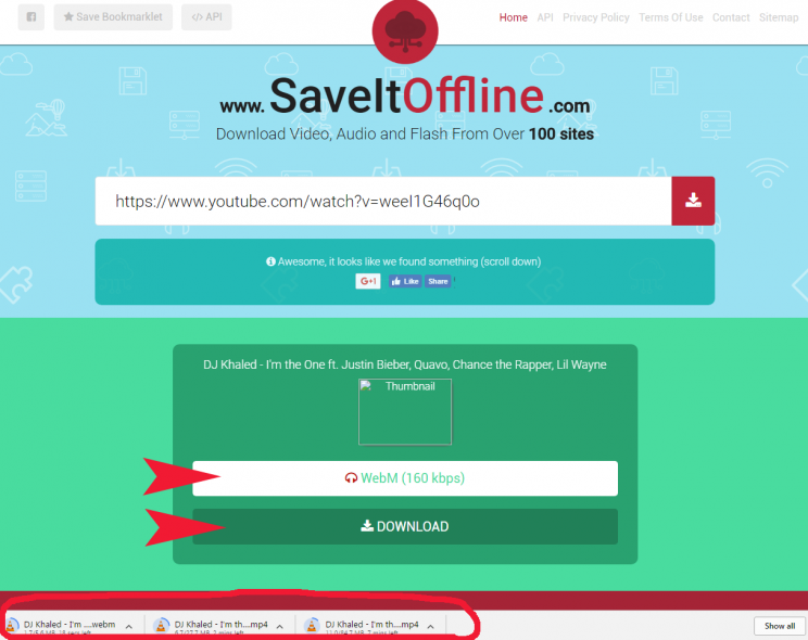 saveitoffline.com step3 download additional formats