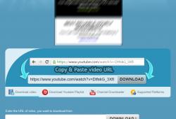 downvids.net review