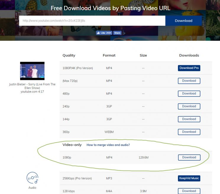 keepvid.com download online video tutorial step 2 enter video url download choices