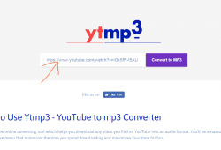 ytmp3.com step1 enter youtube video link