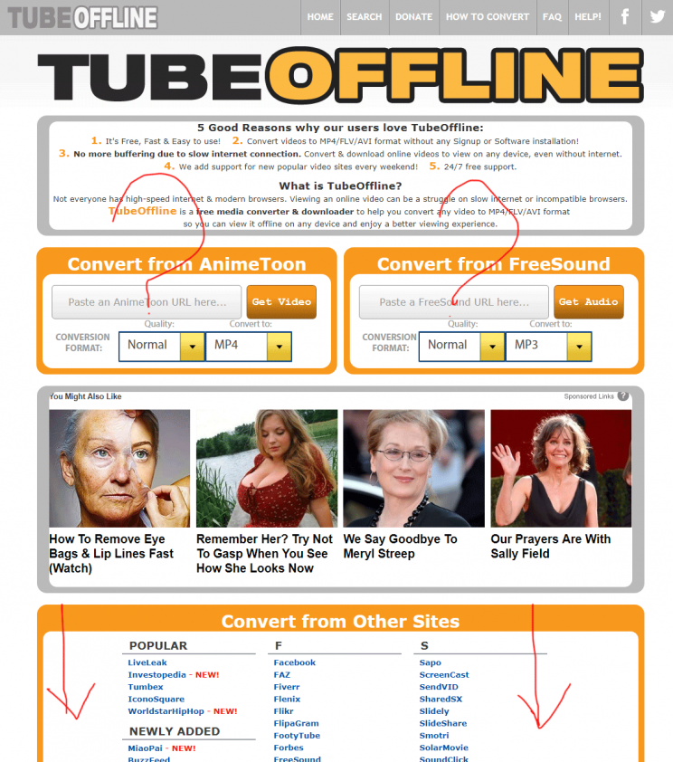 TubeOffline.com review tutorial bad user experience step 1 front page