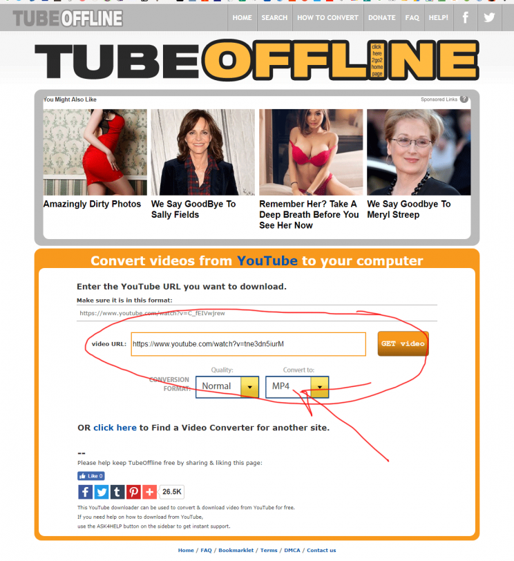 TubeOffline.com review tutorial bad user experience step 6 youtube video downloader page found step 6