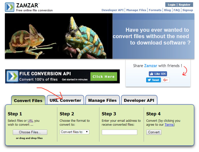 zamzar.com review tutorial step 1 front page