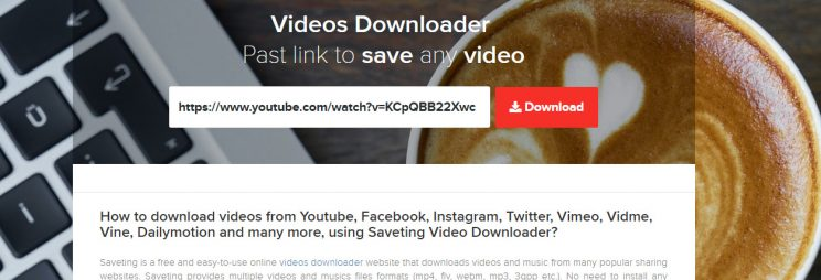 saveting review and tutorial step 2 enter video url and press download