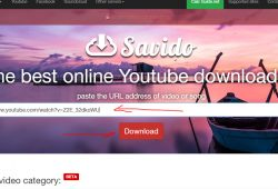 savido.net quick review and tutorial step 2 enter video URL and click download