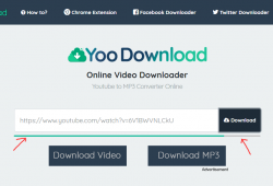 yoodownload.com review and tutorial step 2 enter the video link and submit, check the progress indicator