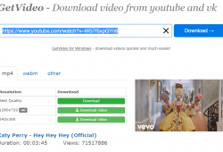 Getvideo.org Review Tutorial step 3 pick your download option