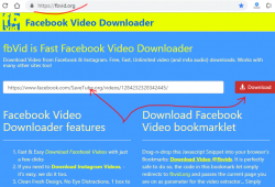 fbvid.org facebook downloader review tutorial step 1 open front page