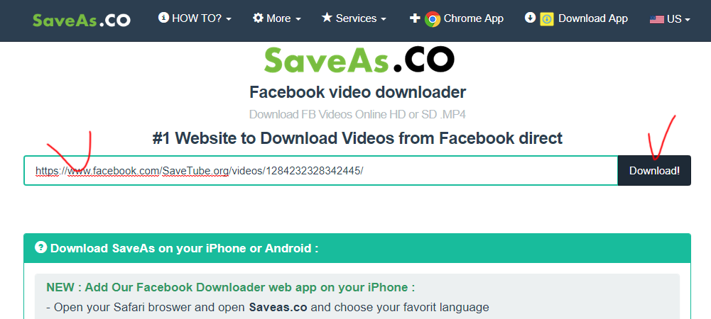 Saveas co new facebook video downloader Review and Tutorial, opinions