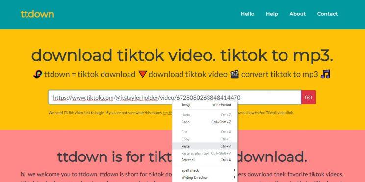ttdown-org step 1 paste tiktok video link