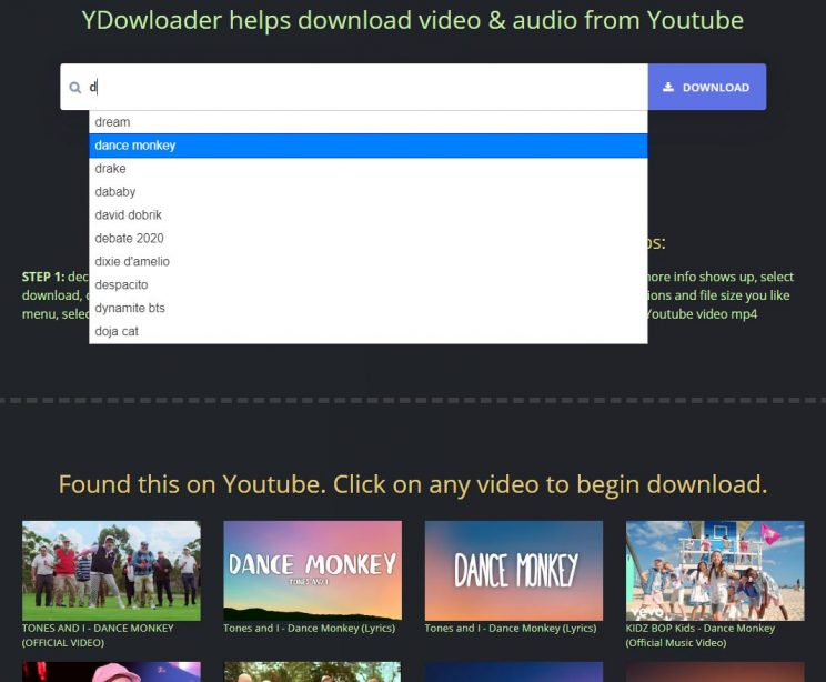 ydownloader search suggestion and results